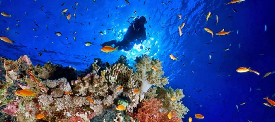Port Blair - Havelock Island