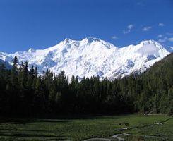 Kool Kashmir