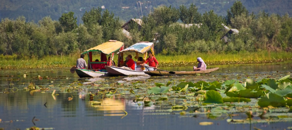 Srinagar: Local Sightseeing (50 Kms)