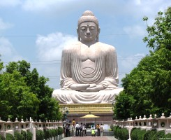 Buddhist Circuit (Lite)