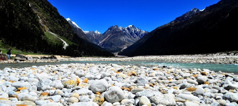 Lachung: Excursion Trip To Yumthang Valley - Gangtok