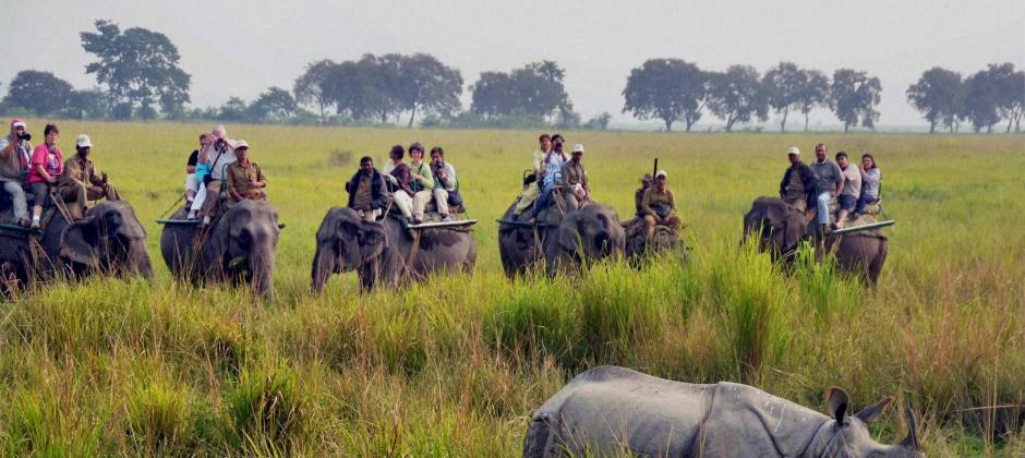 Kaziranga National Park: Jeep Safari