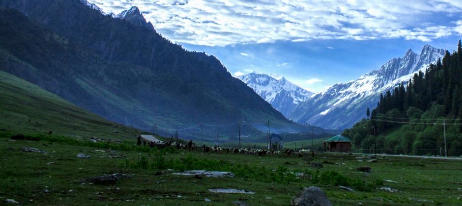 Pahalgam – Srinagar (93 Kms/2 Hrs)