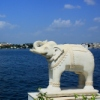 Glimpses of Rajasthan